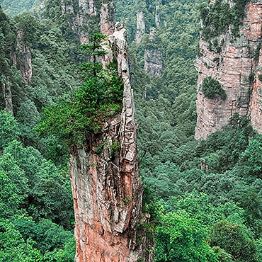 Zhangjiajie Day Tour
