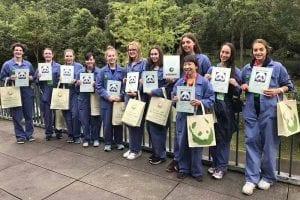 2019 China Tours Students Tour Chengdu 7