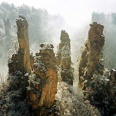 7 Days China Natural Beauty, Experience Chengdu, Zhangjiajie, Shanghai