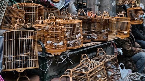 Xi'an market